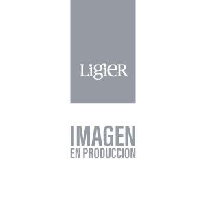 Tequila Patron Xo Café 750 Estuche Con Vasos